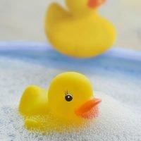 Duck. Pato De Goma De Pvc 98078